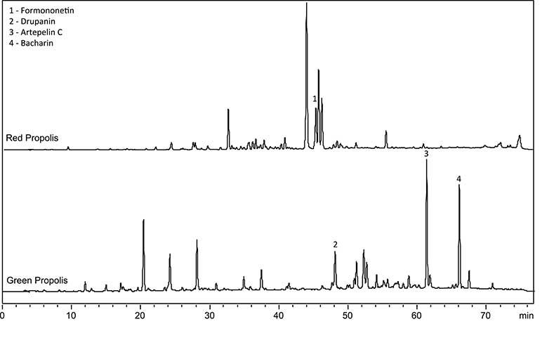 Chemical fingerprint propolis merah dan hijau